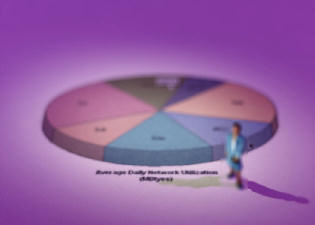 Demographics - Pie Chart